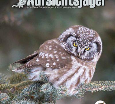 Der Steirische Aufsichtsjäger Ausgabe 24. – Winter 2020