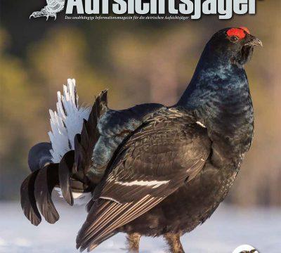 Der Steirische Aufsichtsjäger Ausgabe 25. – Frühling 2021